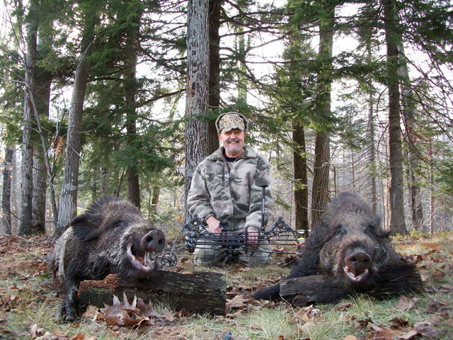 Wild Wild Giant Boar Hunt and Slay an Authentic Boar inGiant Wild Boar Hunting